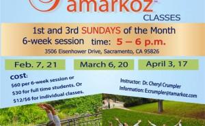 Tamarkoz Adults' Classes in Sacramento (February-April 2016)